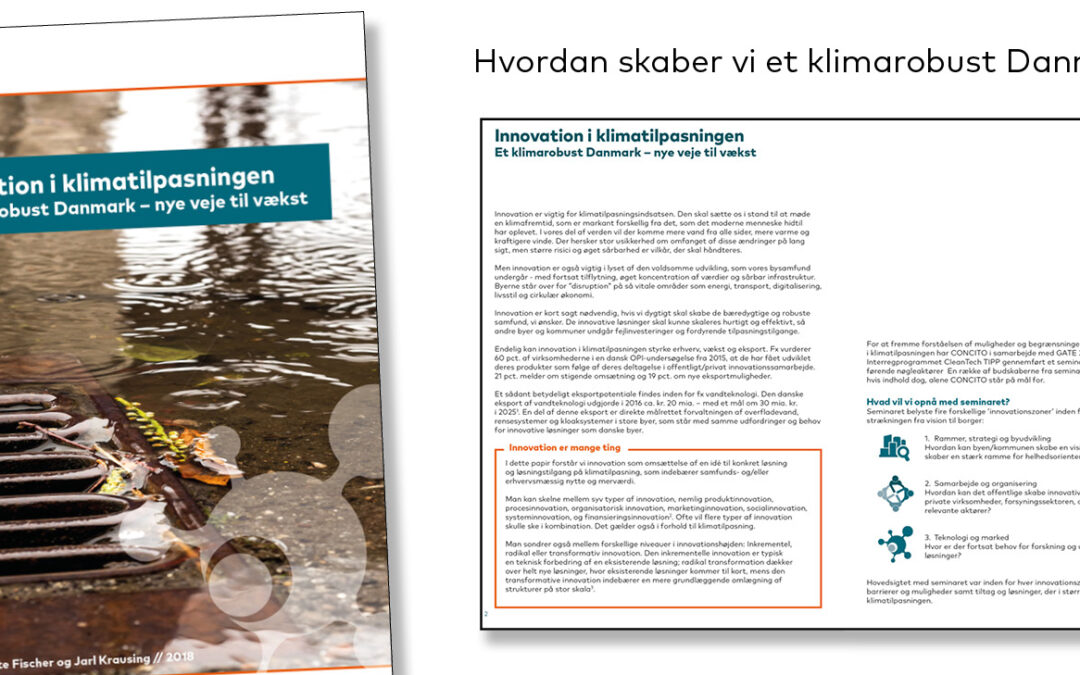Innovation i klimatilpasning