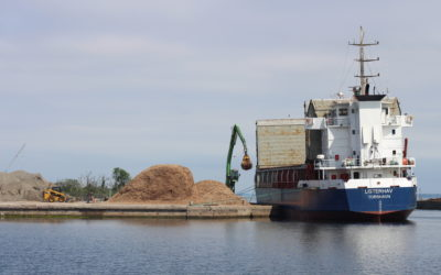 Skib med flis fra Lolland har lagt til kaj i København