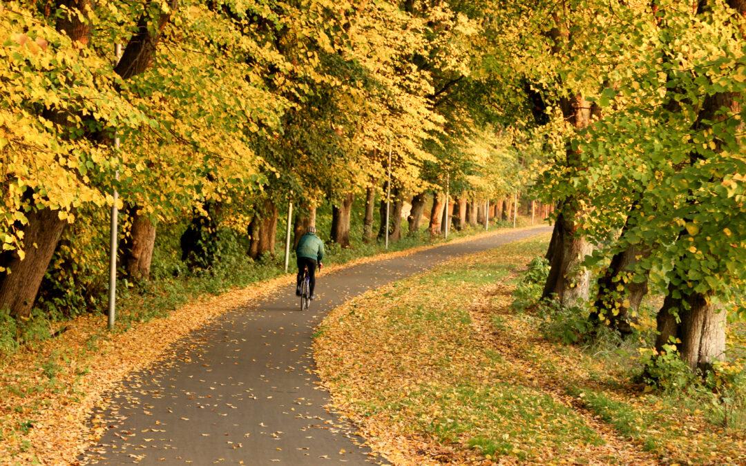 Grøn mobilitet afhjælper stress, nedslidning og inaktivitet på en bæredygtig måde