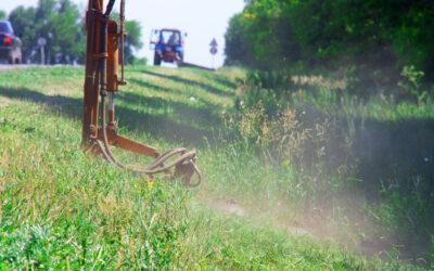 Lejre Kommune vil bytte græs med grønne enge i nyt projekt om bedre biodiversitet.